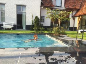 The swimming pool at or close to de Gasterie