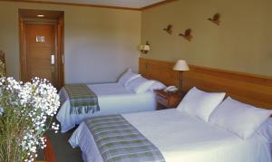 Cama o camas de una habitación en Hotel Puelche
