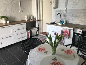 A kitchen or kitchenette at Övergrans Jordbruk