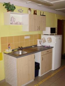 Kuchyň nebo kuchyňský kout v ubytování Penzion U Remízky