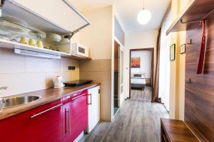 Kuchnia lub aneks kuchenny w obiekcie Rezidence Davids Apartments