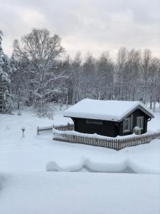 Lammsjon Relax during the winter