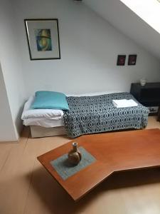 Postel nebo postele na pokoji v ubytování Apartment Sova