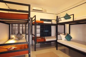 A bunk bed or bunk beds in a room at Zostel Alleppey