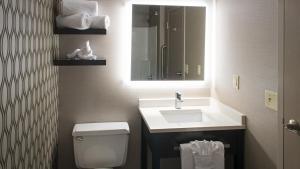 A bathroom at Holiday Inn St. Paul Downtown