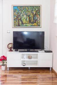 TV a/nebo společenská místnost v ubytování Apartman Dukić