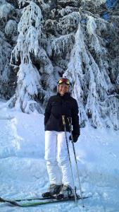 Skifahren im Aparthotel oder in der Nähe