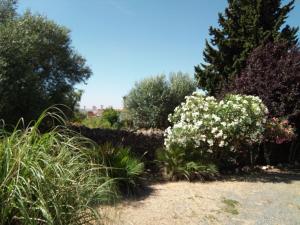 Jardín al aire libre en La Caldera Vieja