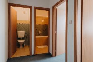 Ein Badezimmer in der Unterkunft Červený Mlýn