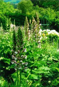 Ein Garten an der Unterkunft Ferienwohnung Erika Beierlein