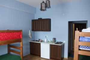 A kitchen or kitchenette at Gudauri residence 3