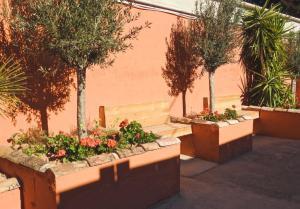 Jardín al aire libre en MOM La Punta