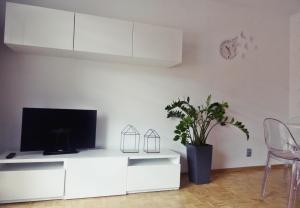 A television and/or entertainment center at Araval Apartament