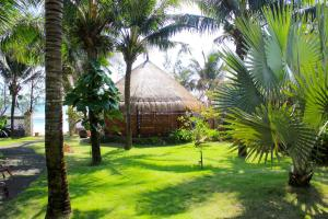 A garden outside Casa Beach Resort
