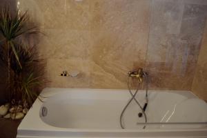 O baie la Villa Castelul Maria
