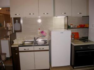 Kuhinja ili čajna kuhinja u objektu Apartman Kej Zemun