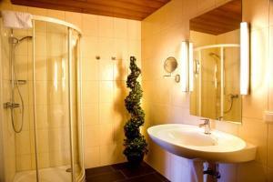 A bathroom at Hotel Haus Krone