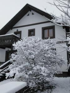 Pension La Roata during the winter