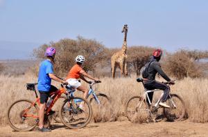 Cycling at or in the surroundings of Satao Elerai