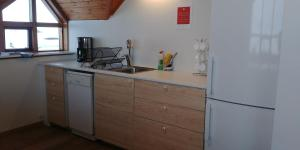 A kitchen or kitchenette at Skútustadir Guesthouse