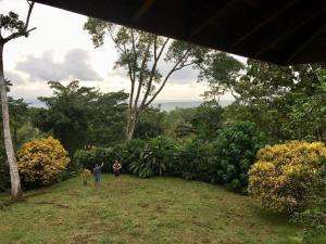 A garden outside Casa Paraíso