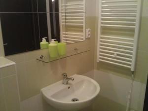 Koupelna v ubytování Apartmán Jaspis
