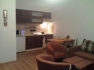 Kuchyň nebo kuchyňský kout v ubytování Apartmán Jaspis