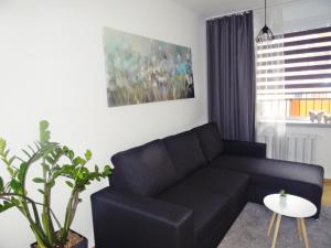 A seating area at Araval Apartament