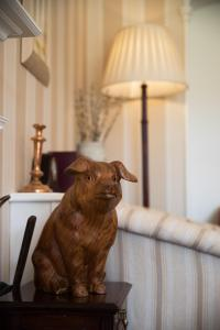 Pet or pets staying with guests at Hazel Bank Country House