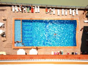 A view of the pool at Hotel Safari or nearby