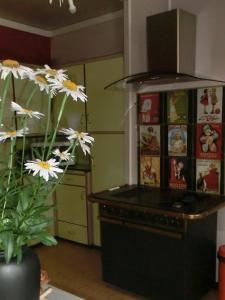 Cuisine ou kitchenette dans l'établissement Le gîte du familistère