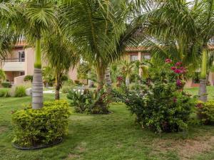 Een tuin van Aruba , Eagle Beach Townhouse