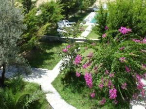 A garden outside Dryoussa Apartments
