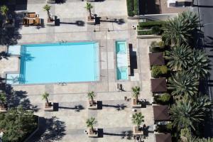 Vista de la piscina de Luxury Suites International at The Signature o alrededores