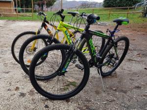 Attività di ciclismo presso l'hotel o nelle vicinanze