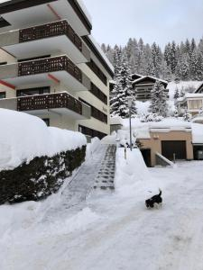 Jasmin Davos during the winter