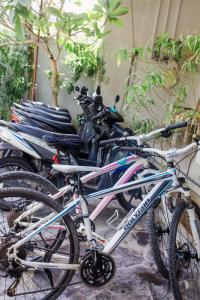 Biking at or in the surroundings of Matra Bali Surf Camp
