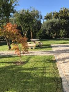 A garden outside Holiday home Calcada do Giestal