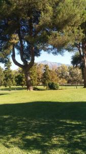 A garden outside Atalaya Golf Bungalow 1