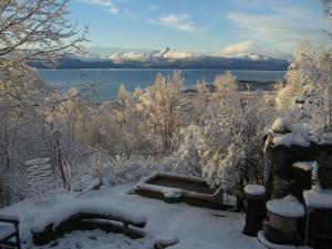 Brigitte's Bavarian Bed und Breakfast during the winter