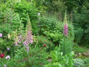 A garden outside Brigitte's Bavarian Bed und Breakfast