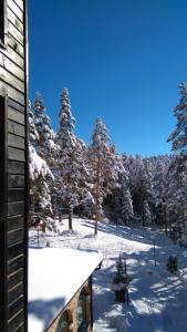 Хотел Магнолия през зимата