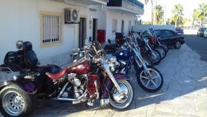 Andar de bicicleta em Hostel Luso Espanhola ou nos arredores