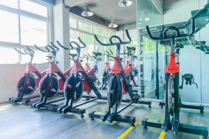 The fitness center and/or fitness facilities at The Somerset Hotel