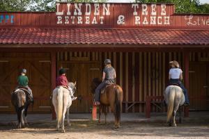 Équitation au sein de le village vacances ou à proximité