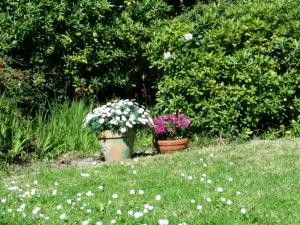 A garden outside Villa Cottage Reine, Centre Cannes