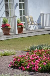 A garden outside Sagadi Manor Hotel