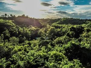 ホリデーパークから撮影された、または一般的な山の景色