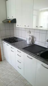 Kuhinja oz. manjša kuhinja v nastanitvi Apartments Varos