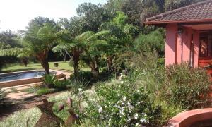 A garden outside Ambience Inn